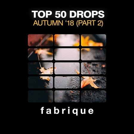 Top 50 Drops Autumn '18 [Part 2] (2018) MP3