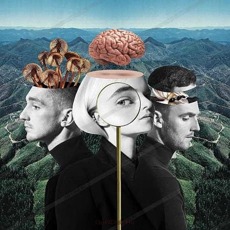 Clean Bandit - What Is Love? [Deluxe Edition] (2018) MP3