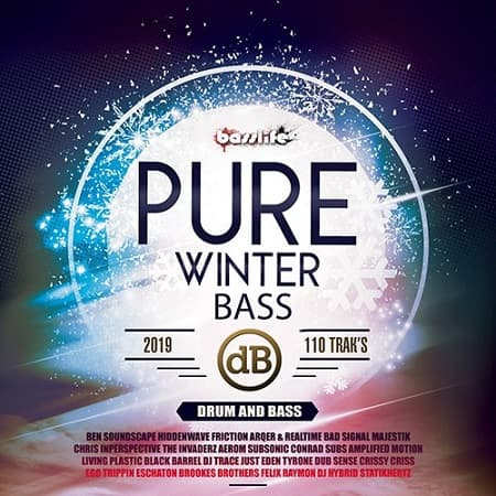 Pure Winter Bass (2019) MP3