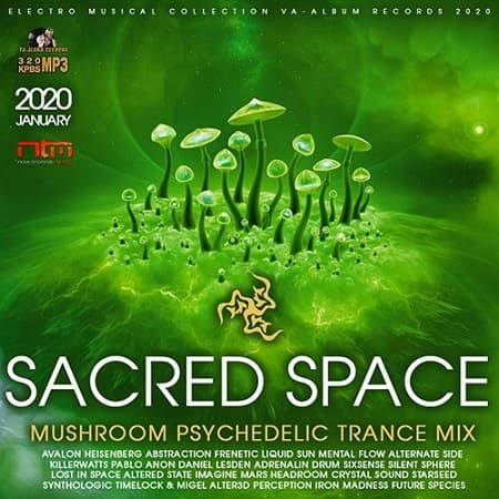 Sacred Space: Mushroom Psy Trance Mix (2020) MP3